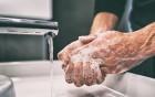 Durch häufiges Waschen strapazierte Hände richtig pflegen