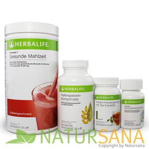 HERBALIFE Basis-Wellness-Programm Erdbeere
